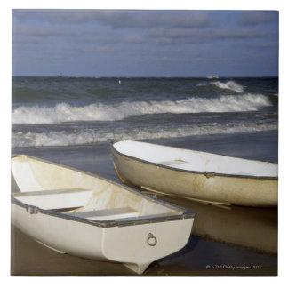 Oak Street Beach, Beach, Lakeshore, Lake Tile