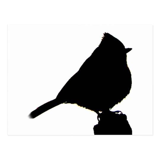 Oak Titmouse black & white Postcard
