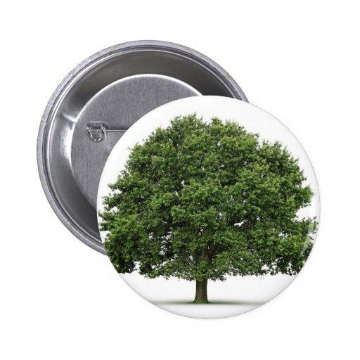 Oak Tree Buttons