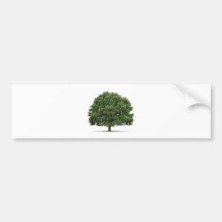 Oak Tree Car Bumper Sticker
