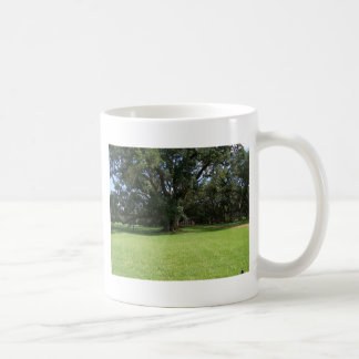 OAK TREE COFFEE MUG