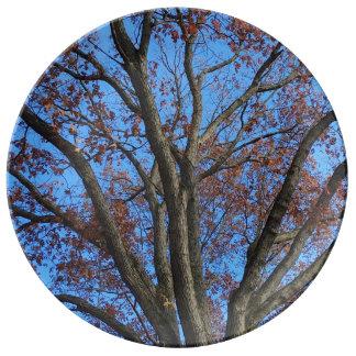 Oak Tree in a Blue Autumn Sky - Porcelain Plate