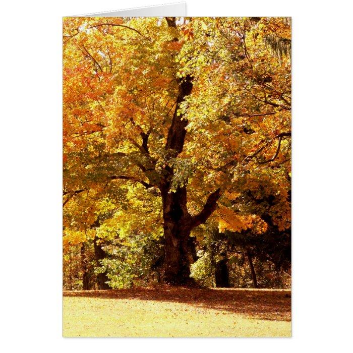 Oak Tree in Fall Card