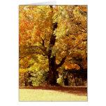 Oak Tree in Fall Greeting Card