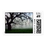 Oak tree in fog postage stamps