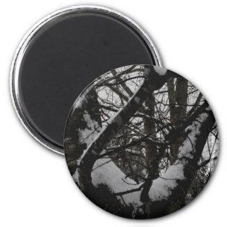 Oak Tree in the Winter Magnet