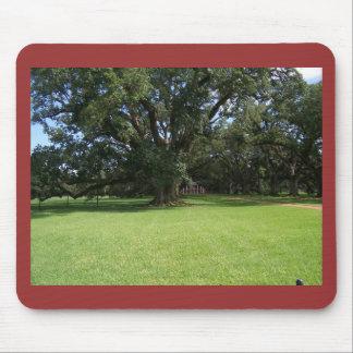 OAK TREE MOUSE PAD