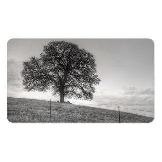 Oak Tree On A Hill Business Card Template