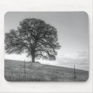 Oak Tree On A Hill Mouse Pad
