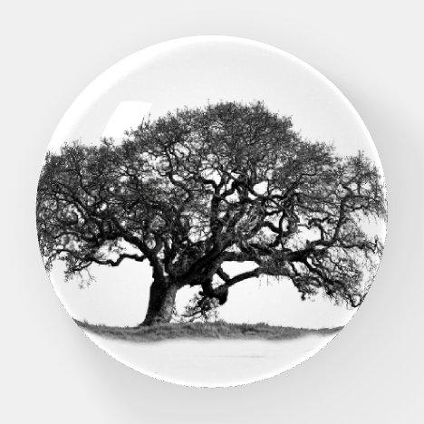 OAK TREE PAPERWEIGHT