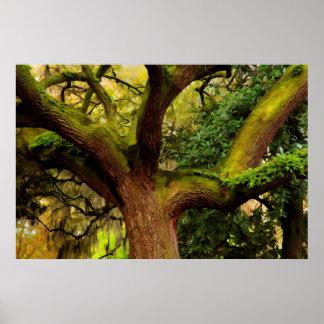 Oak tree print