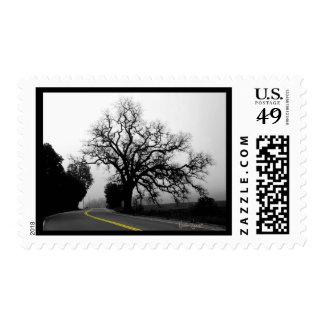 Oak Tree,  road's yellow line Postage