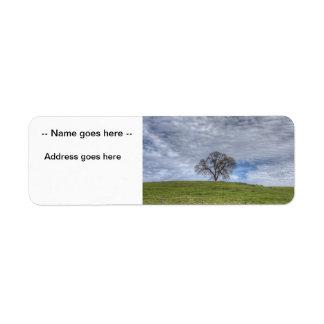 Oak Tree Solitaire Return Address Labels
