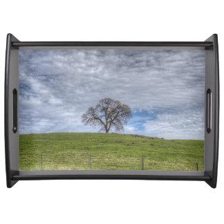Oak Tree Solitaire Service Tray