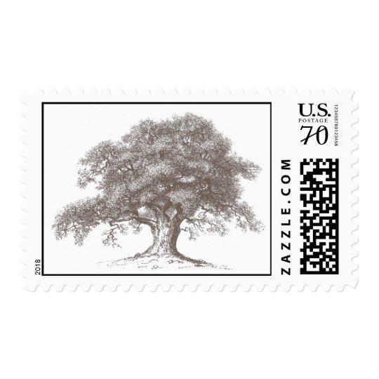 Oak Tree Stamp - brown