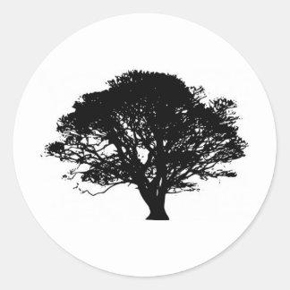 Oak tree stickers