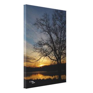 Oak tree sunrise Stretched Canvas Print