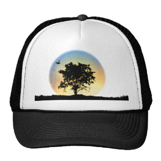 Oak tree sunset trucker hat