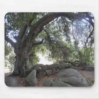 Oak Tree Temple - Angel Light Mouse Pad