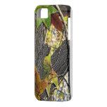 Oak Tree Woodland iPhone 5 Cases