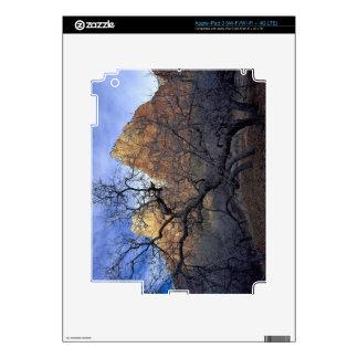 Oak trees in winter, Court of the Patriarchs iPad 3 Skin
