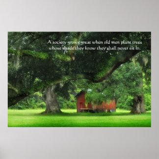 Oak Trees Proverb Poster Print