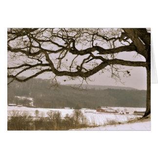 Oak View Card