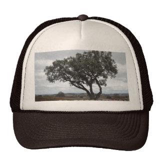 Oak with Wine Barrels, Doce Robles Trucker Hat
