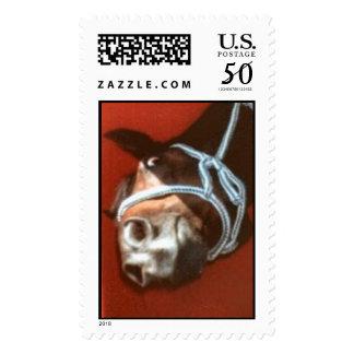 oakie postage