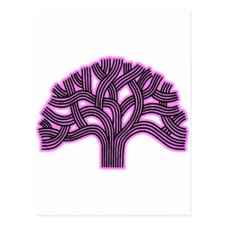Oakland Tree Pink Haze Postcard