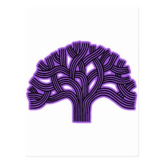 Oakland Tree Purple Haze Postcard