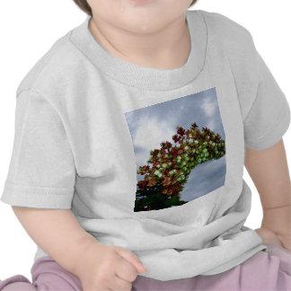 Oakleaf Hydrangea Bloom Tshirts