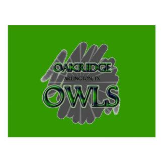 Oakridge School Owls - Arlington, TX Postcard