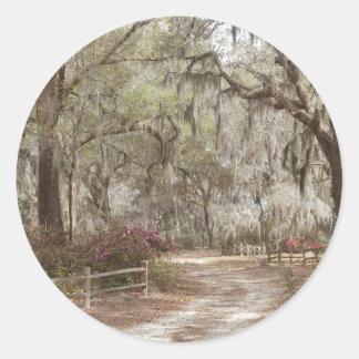 Oaks and Spanish Moss Classic Round Sticker