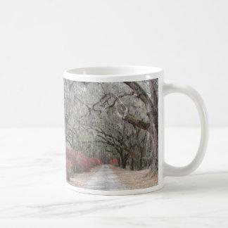 Oaks and Spanish Moss Coffee Mug