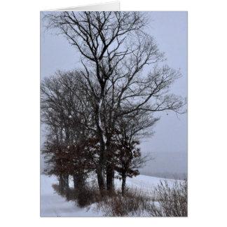 Oaks on the Lane Card