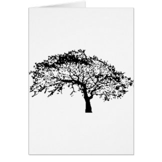 Oaktreefall Greeting Cards