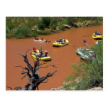 Oar powered rafts turn into the Colorado River Postcard