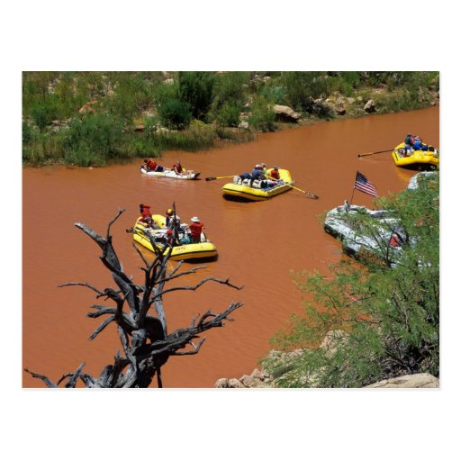Oar powered rafts turn into the Colorado River Post Cards