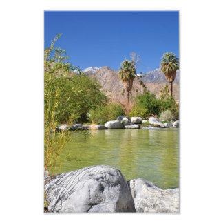 Oasis del desierto impresión fotográfica