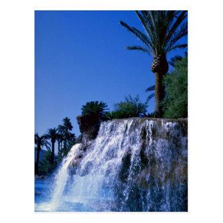 Oasis del desierto tarjeta postal