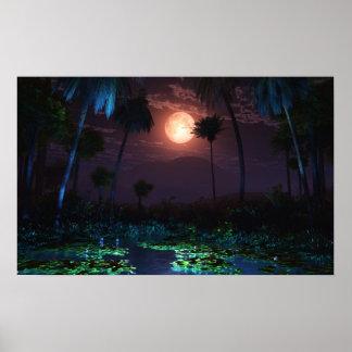 Oasis iluminado por la luna (Illume) Póster