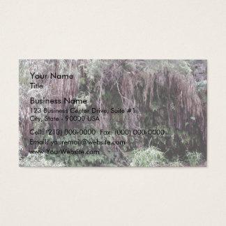 Oasis in the burning desert business card