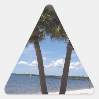Oasis sombrío #2 colcomanias triangulo personalizadas