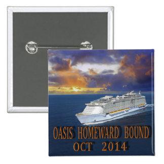 Oasis TA octubre de 2014 Pins