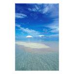 Oasis tropical de la isla tropical  papeleria de diseño