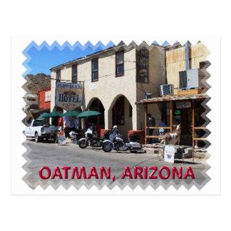 Oatman Arizona Postcard