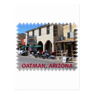 Oatman Arizona Postcard
