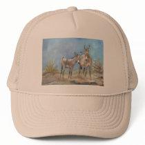 Oatman burros on trucker hat