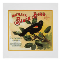 Oatman's Black Bird Brand Fruit Crate Label